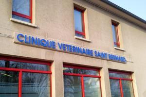 Atelier-Enseignes-Bandeau-Lettres-et-Tube-HT-Clinique-Veterinaire-Metz-Strasbourg-57