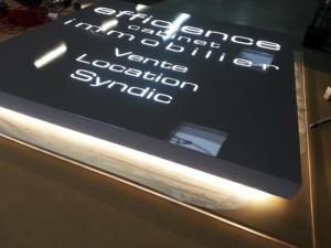 Atelier-Enseignes-Plaque-lumineuse-leds-Efficience-Longeville-57