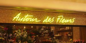 Atelier-Enseignes-Enseigne-Tubes-Haute-Tension-HT-Autour-des-Fleurs-Thionville-57
